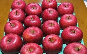 りんご大玉5kgとりんごジュース10パック