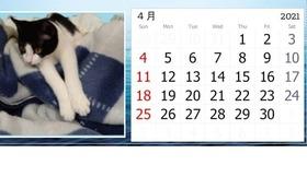 メルちゃんオリジナルカレンダー(2021年4月始まり)