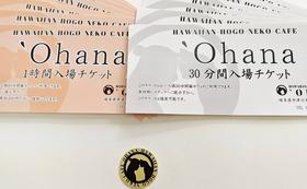 10000円で応援。ポストカード、御猫印、入場チケットコース