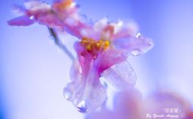 G|写真家青柳 陽一と写真学校にて対談体験(予約制)