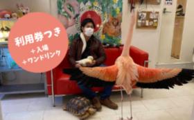 【スタンダードコース】応援+カフェ利用券