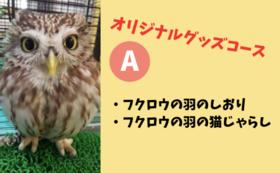 【オリジナルグッズつき応援コース】A