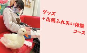 【あなたのおうちがミニ動物園に!】体験コース