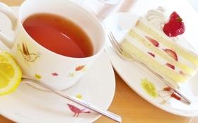 【メンバーにケーキとお茶の差し入れスポンサー権】差入れケーキがこのプロジェクトをより大きなものにするかも!?