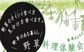 15年目を記念する棚田の書籍1冊と自然体験(野草収穫、田植え体験等) 1日のご招待券(1人)