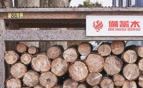 みなさまの「お名前(法人名/個人名可)」を「備蓄木ステーション」に掲載します!【サイズM】