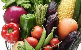 「旬の練馬野菜の詰め合わせ」夏野菜