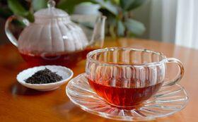 【夏休みの自由研究に!】自宅でリーフ(葉)から紅茶に加工体験(ワークショップ)
