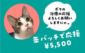 保護猫太郎の缶バッチで応援コース5500円