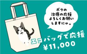 保護猫太郎のエコバッグで応援コース11,000円