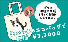 保護猫太郎の缶バッチ&エコバッグで応援コース33,000円