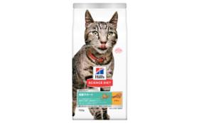 【猫と暮らす飼い主様向け】キャットフードコース