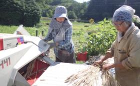 【体験】オーダーメイド農業体験