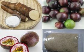 トロピカルフルーツ2種とキャッサバ芋(市場価格4,000円相当)
