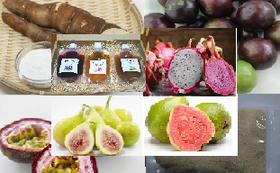 トロピカルフルーツ5種類と加工品、キャッサバ芋(45,000円相当)