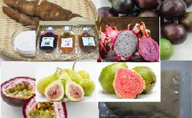 トロピカルフルーツ5種類と加工品、キャッサバ芋(45,000円相当)4回