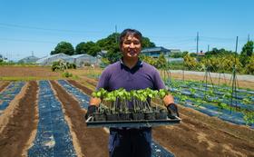 【2022年1月予定】見沼ひるま農園紹介ツアー!!高橋さんと談笑しながらくわいの出荷作業体験も!! ≪お土産付き≫