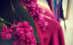 B:花のコース