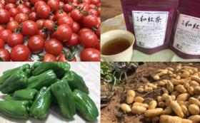 紅茶だけでなく、のんちゃんがお世話になった農家の皆さんが作った野菜で美味しく応援コース