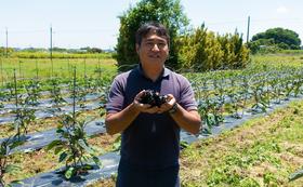 【2021年11月15日~20日のうち1日を予定】見沼ひるま農園くわい収穫見学会!! ≪HITOMAでランチつき!!≫