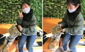 B|しろとり動物園を満喫!コース