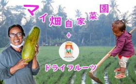 マイフルーツ畑 in バリ島  + バリの無添加ドライフルーツ
