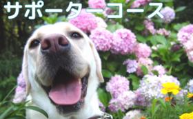5万円|応援サポーターコース