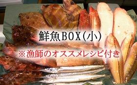 ② 鮮魚BOX(小) ※漁師オススメレシピ付き