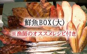 ⑤ 鮮魚BOX(大) ※漁師オススメレシピ付き