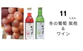 是里ワイナリーのワイン&ブドウ「紫苑」&除菌ウエットティッシュ