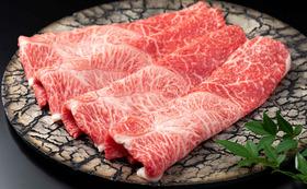 テキスト&予想問題&佐賀牛(すき焼き、しゃぶしゃぶ用肉220g)