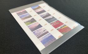 特製風景写真印刷紙付きクリアファイル1枚