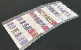 特製昆虫・花・風景写真印刷紙付きクリアファイル3枚1セット