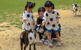 【5万円/応援コース】こころ育む自然体験を子どもたちにプレゼント