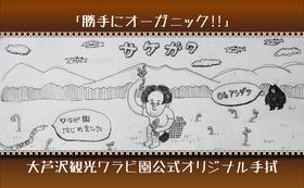 「勝手にオーガニック‼」大芦沢観光ワラビ園公式オリジナル手拭