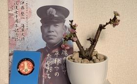 戦艦大和ゆかりの鉢植え父子桜・使い捨てマスク×2箱・記念メダル・記念誌