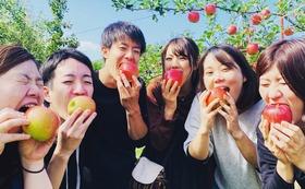 クランピング・パーク整備応援コース⑫ 信州のりんご小玉(サンフジ)5kg&オリジナルステッカー付