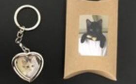 お礼のお手紙・メッセージカード(3枚組)・卓上カレンダー・ねこキーホルダー・『保護猫あんちゃん』新聞