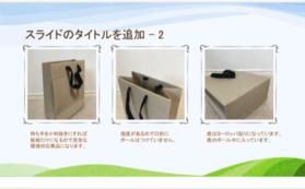 環境問題取組み 3R本当のエコバック ライナーバック 日本から世界へ
