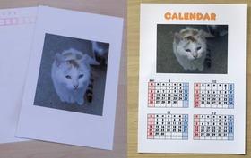 感謝のメールとポストカード2枚、カレンダー2枚
