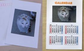 感謝のメールとポストカード4枚、カレンダー4枚