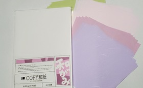 COPY和紙と20センチ角和紙25枚