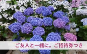 【応援&来園:5万円】ご友人にもおすすめご招待券つき