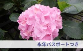 【応援&来園:10万円】永年パスポート&ご招待券つき