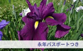 【応援&来園:30万円】永年パスポート&ご招待券つき