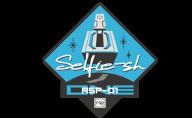 いつも心にBE Selfie-sh! RSP-01ミッション刺繍ワッペン