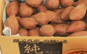 【リターン】40日間寝かせたしっとりあまい安納芋のお届け10キロ
