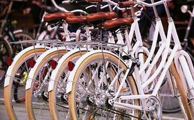 自転車、ペットあわせて4台(4匹)分までの1年分補償および寄付先推薦権(9団体まで)