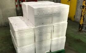 リターン10【業者・店舗向け】ネルソンズコーン 1000 KG 廃棄処分を避けるための無利益価格