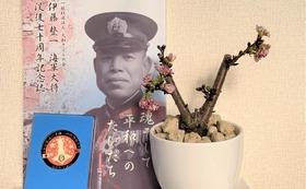 戦艦大和ゆかりの鉢植え父子桜・使い捨てマスク×3箱・記念メダル・記念誌・木製表札を墓苑に設置